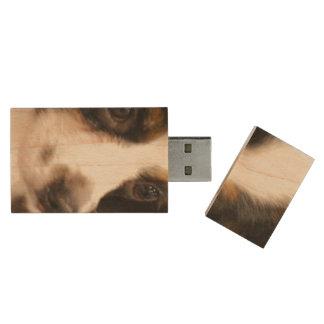 Sweet Papillon Puppy Wood USB 2.0 Flash Drive