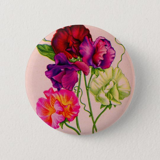 sweet pea in purple and pink 6 cm round badge