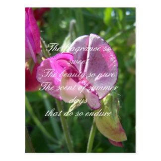 Sweet pea poetry postcard
