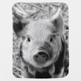 sweet piglet, black white baby blanket