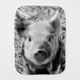 sweet piglet, black white burp cloth