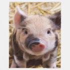 Sweet Piglet Fleece Blanket