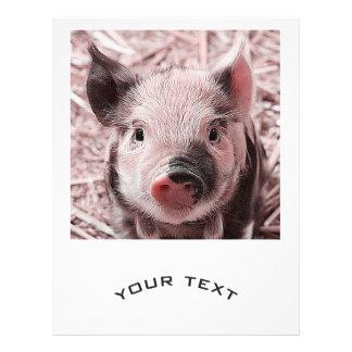 """Sweet piglet 8.5"""" x 11"""" flyer"""