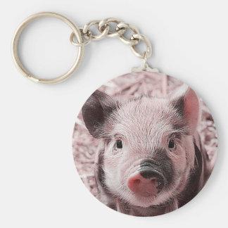 sweet piglet pink keychains