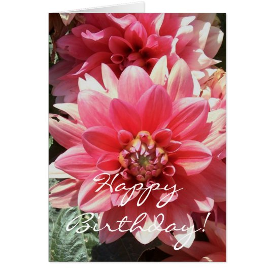 Sweet Pink Zinnea Happy Birthday Card