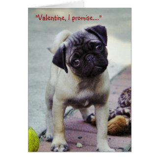Sweet Pug Puppy Valentine #1 Greeting Card