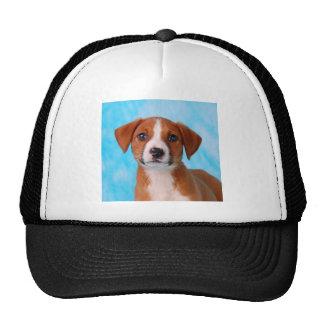 Sweet pup mesh hat
