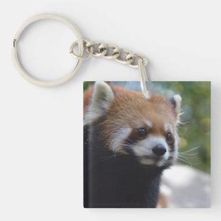 Sweet Red Panda Bear Key Ring