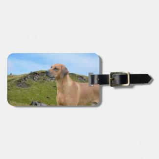 Sweet Rhodesian Ridgeback Dog Luggage Tag