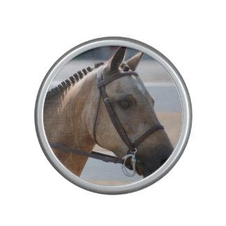 Sweet Roan Pony Bluetooth Speaker