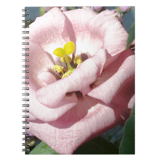 Sweet rose flower spiral note book