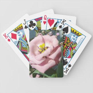 Sweet rose flower bicycle poker deck