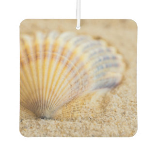Sweet Seashell Car Air Freshener