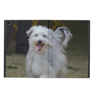 Sweet Sheepdog iPad Air Case