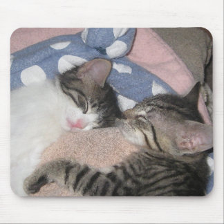 Sweet Sleeping Kittens Mouse Pad