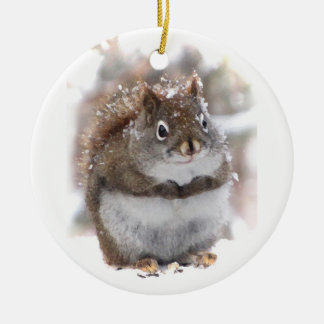 Sweet Squirrel Christmas Ornament