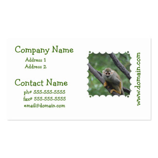 Sweet Squirrel Monkey Pack Of Standard Business Cards