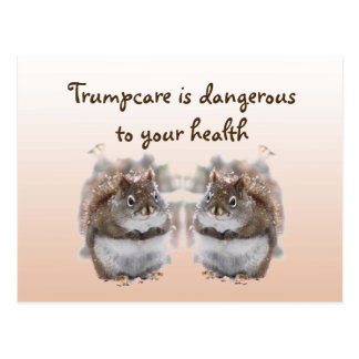 Sweet Squirrels Talk About Trumpcare Postcard
