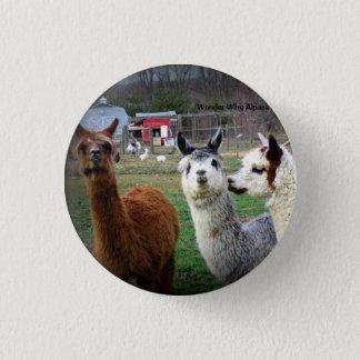 Sweet Suri Alpacas of Wonder 3 Cm Round Badge