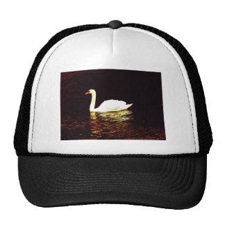 Sweet Swan Trucker Hat