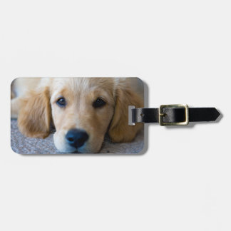 Sweet, Sweet Puppy Luggage Tag