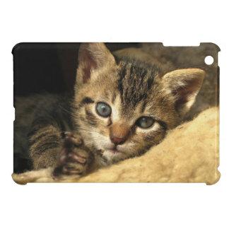 Sweet Tabby Kitten Resting iPad Mini Covers