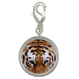 Sweet Tiger Charm Bracelets