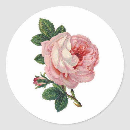 Sweet Victorian Rose Sticker