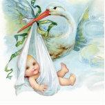 Sweet Vintage Blue Stork Baby Boy Shower