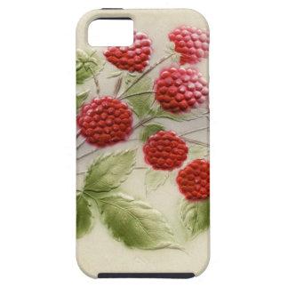 Sweet Vintage Raspberries Phone Case