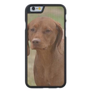 Sweet Vizsla Carved® Maple iPhone 6 Case