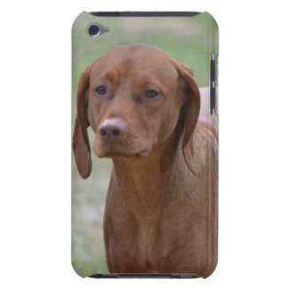 Sweet Vizsla Barely There iPod Case