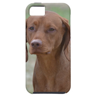 Sweet Vizsla Case For The iPhone 5