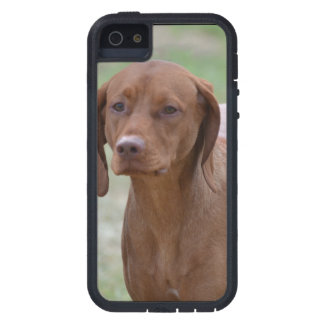 Sweet Vizsla Tough Xtreme iPhone 5 Case