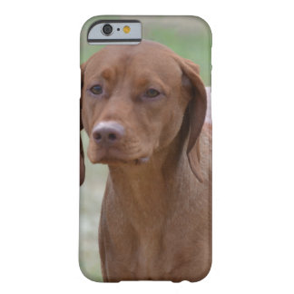 Sweet Vizsla Barely There iPhone 6 Case
