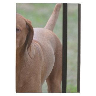 Sweet Vizsla Case For iPad Air