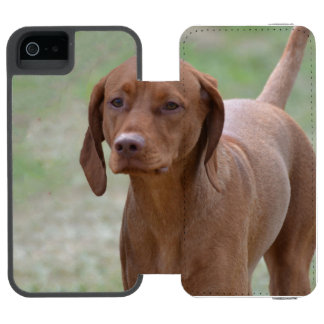 Sweet Vizsla Incipio Watson™ iPhone 5 Wallet Case