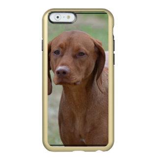 Sweet Vizsla Incipio Feather® Shine iPhone 6 Case