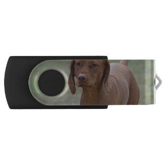 Sweet Vizsla Swivel USB 2.0 Flash Drive