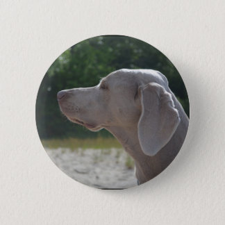 Sweet Weimaraner Dog Profile 6 Cm Round Badge