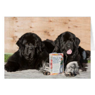 Sweet welcome wishes baby card with newfoundlands