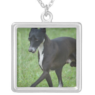 Sweet Whippet Custom Necklace