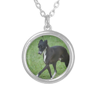 Sweet Whippet Round Pendant Necklace