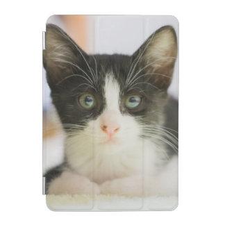 Sweet White And Black Kitten iPad Mini Cover
