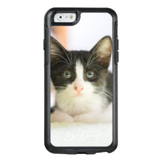 Sweet White And Black Kitten OtterBox iPhone 6/6s Case