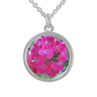 Sweet William Flower Purple Jewelry