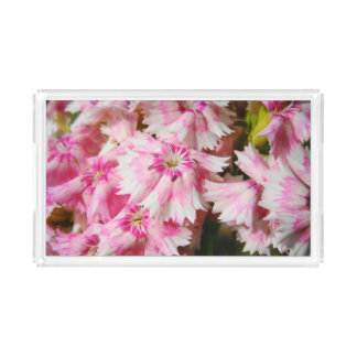 Sweet William Flowers Acrylic Tray