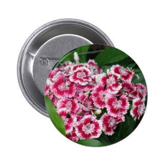 Sweet William Flowers Round Button