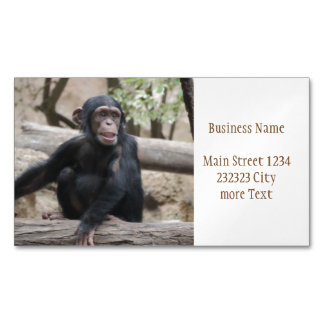 Sweet youmg Chimpanzee Magnetic Business Cards