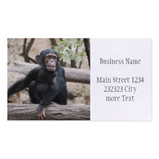 Sweet youmg Chimpanzee Pack Of Standard Business Cards